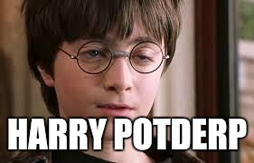 HARRY POTDERP | image tagged in harry potter stoned | made w/ Imgflip meme maker
