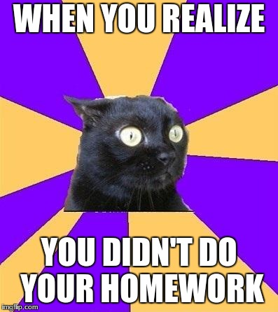 anxiety cat | WHEN YOU REALIZE YOU DIDN'T DO YOUR HOMEWORK | image tagged in anxiety cat | made w/ Imgflip meme maker
