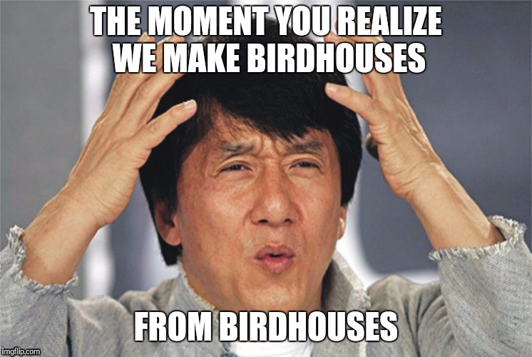 Humanity is stupid. | THE MOMENT YOU REALIZE WE MAKE BIRDHOUSES FROM BIRDHOUSES | image tagged in what the hell | made w/ Imgflip meme maker