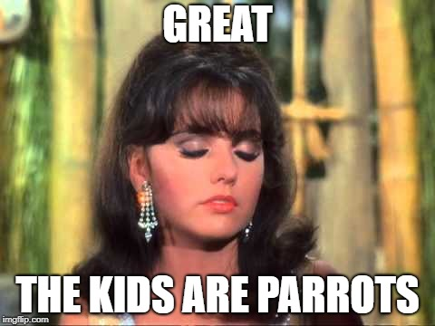 Maryann | GREAT THE KIDS ARE PARROTS | image tagged in maryann | made w/ Imgflip meme maker
