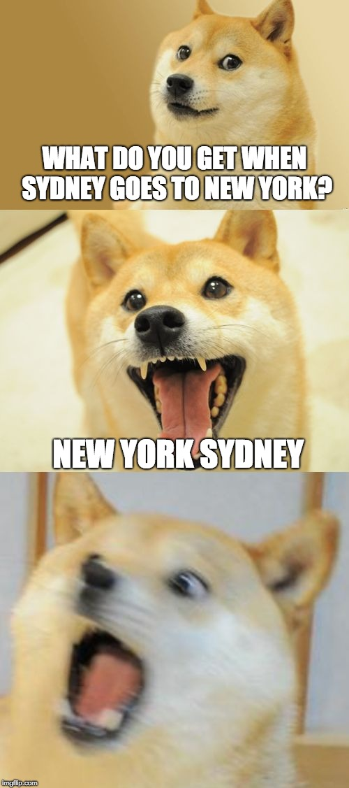Hopefully Sydney won't see this lol | WHAT DO YOU GET WHEN SYDNEY GOES TO NEW YORK? NEW YORK SYDNEY | image tagged in bad pun doge,memes,new york city | made w/ Imgflip meme maker