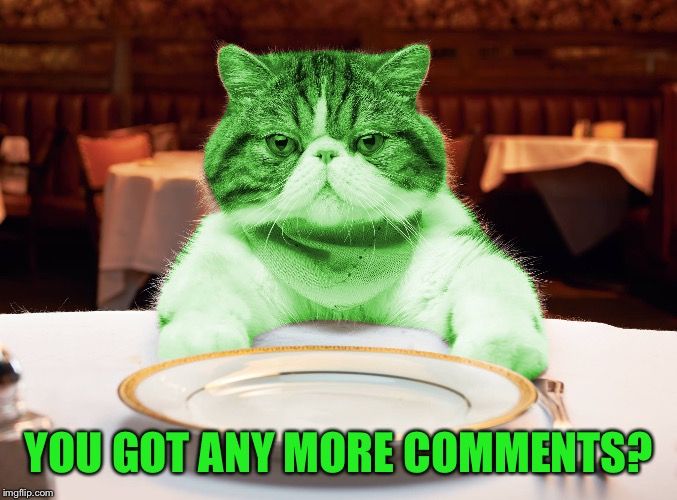 RayCat Hungry | YOU GOT ANY MORE COMMENTS? | image tagged in raycat hungry | made w/ Imgflip meme maker