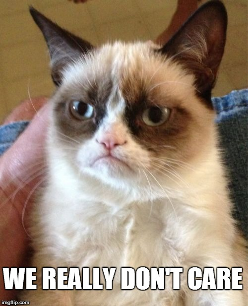 Grumpy Cat Meme | WE REALLY DON'T CARE | image tagged in memes,grumpy cat | made w/ Imgflip meme maker