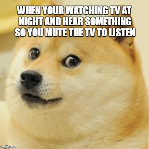 Doge | WHEN YOUR WATCHING TV AT NIGHT AND HEAR SOMETHING SO YOU MUTE THE TV TO LISTEN | image tagged in memes,doge | made w/ Imgflip meme maker
