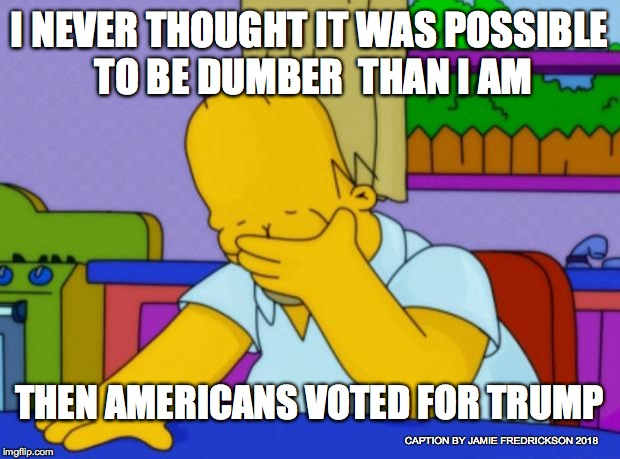 Homer Simpson | I NEVER THOUGHT IT WAS POSSIBLE TO BE DUMBER  THAN I AM THEN AMERICANS VOTED FOR TRUMP CAPTION BY JAMIE FREDRICKSON 2018 | image tagged in homer simpson | made w/ Imgflip meme maker