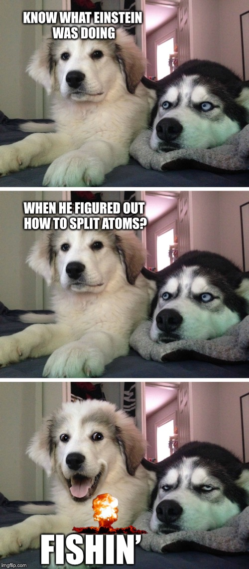 Bad pun dogs | KNOW WHAT EINSTEIN WAS DOING FISHIN' WHEN HE FIGURED OUT HOW TO SPLIT ATOMS? | image tagged in bad pun dogs,memes,bad jokes | made w/ Imgflip meme maker