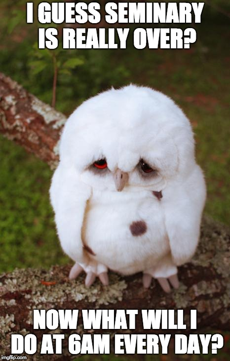 sad owl | I GUESS SEMINARY IS REALLY OVER? NOW WHAT WILL I DO AT 6AM EVERY DAY? | image tagged in sad owl | made w/ Imgflip meme maker