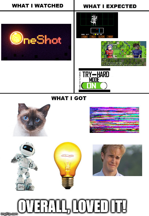 What I Watched/ What I Expected/ What I Got | OVERALL, LOVED IT! | image tagged in what i watched/ what i expected/ what i got | made w/ Imgflip meme maker
