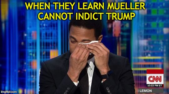 Media Reaction | WHEN THEY LEARN MUELLER CANNOT INDICT TRUMP | image tagged in cnn,trump,robert mueller,indictment,fail of the day,lemon | made w/ Imgflip meme maker