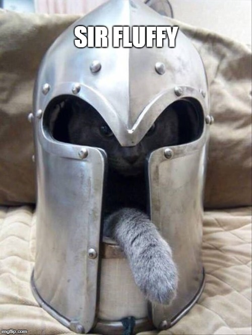 Cats of the round table | SIR FLUFFY | image tagged in cats,knights,fluffy | made w/ Imgflip meme maker
