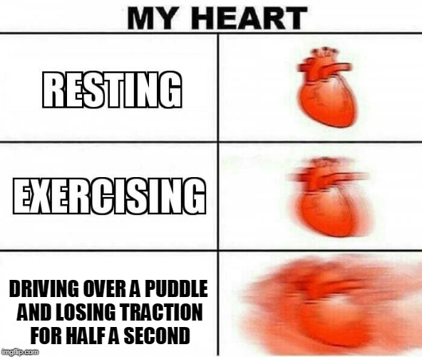 MY HEART | DRIVING OVER A PUDDLE AND LOSING TRACTION FOR HALF A SECOND | image tagged in my heart | made w/ Imgflip meme maker