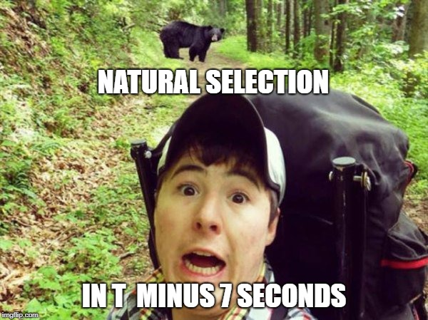 Because taking selfies with dogs is too mainstream | NATURAL SELECTION IN T  MINUS 7 SECONDS | image tagged in natural selection,special kind of stupid | made w/ Imgflip meme maker