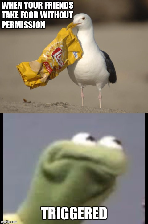 NO ONE TAKES MAH CHIPS | WHEN YOUR FRIENDS TAKE FOOD WITHOUT PERMISSION TRIGGERED | image tagged in memes,funny memes,new memes,kermit,food | made w/ Imgflip meme maker