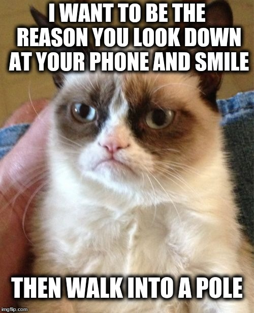 Grumpy Cat Meme | I WANT TO BE THE REASON YOU LOOK DOWN AT YOUR PHONE AND SMILE THEN WALK INTO A POLE | image tagged in memes,grumpy cat | made w/ Imgflip meme maker
