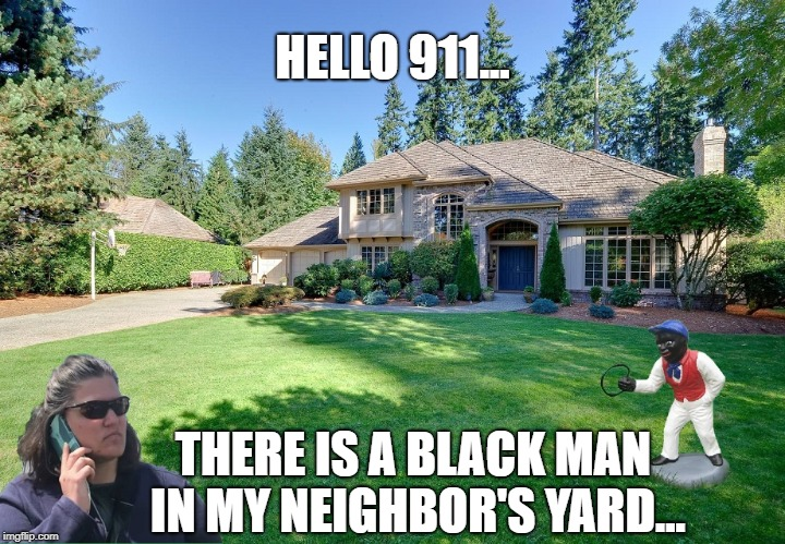 HELLO 911... THERE IS A BLACK MAN IN MY NEIGHBOR'S YARD... | image tagged in hello 911 | made w/ Imgflip meme maker