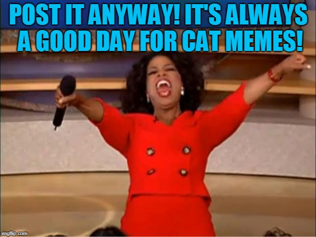 Oprah You Get A Meme | POST IT ANYWAY! IT'S ALWAYS A GOOD DAY FOR CAT MEMES! | image tagged in memes,oprah you get a | made w/ Imgflip meme maker