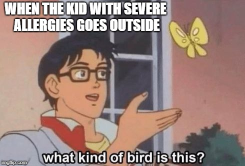 I think its a asthma attack | WHEN THE KID WITH SEVERE ALLERGIES GOES OUTSIDE | image tagged in what kind of bird is this,kid with allergies goes outside | made w/ Imgflip meme maker