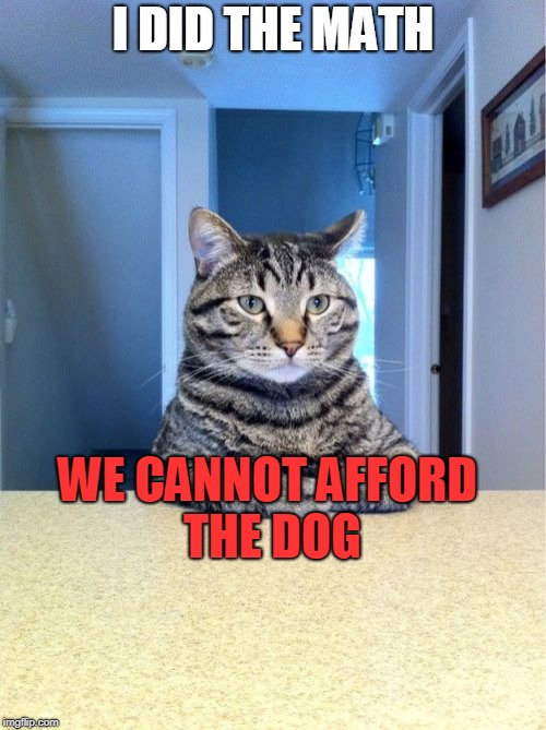 Take A Seat Cat Meme | I DID THE MATH WE CANNOT AFFORD THE DOG | image tagged in memes,take a seat cat | made w/ Imgflip meme maker