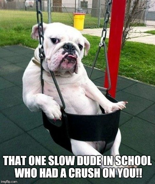THAT ONE SLOW DUDE IN SCHOOL WHO HAD A CRUSH ON YOU!! | image tagged in funny,dogs,playground,school,funny memes,funny dog memes | made w/ Imgflip meme maker