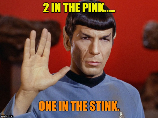 2 IN THE PINK..... ONE IN THE STINK. | image tagged in spock star trek stink | made w/ Imgflip meme maker