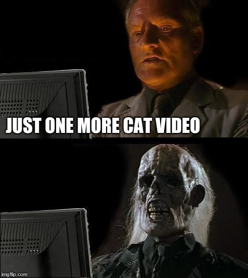 Just one more | JUST ONE MORE CAT VIDEO | image tagged in memes,ill just wait here,cat videos | made w/ Imgflip meme maker