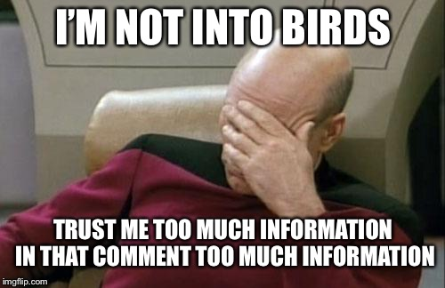 Captain Picard Facepalm Meme | I'M NOT INTO BIRDS TRUST ME TOO MUCH INFORMATION IN THAT COMMENT TOO MUCH INFORMATION | image tagged in memes,captain picard facepalm | made w/ Imgflip meme maker