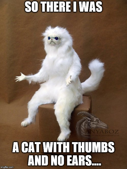 Persian Cat Room Guardian Single Meme | SO THERE I WAS A CAT WITH THUMBS AND NO EARS.... | image tagged in memes,persian cat room guardian single | made w/ Imgflip meme maker