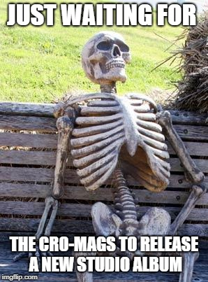 Waiting Skeleton | JUST WAITING FOR THE CRO-MAGS TO RELEASE A NEW STUDIO ALBUM | image tagged in memes,waiting skeleton,doctordoomsday180,cro mags,punk rock,album | made w/ Imgflip meme maker