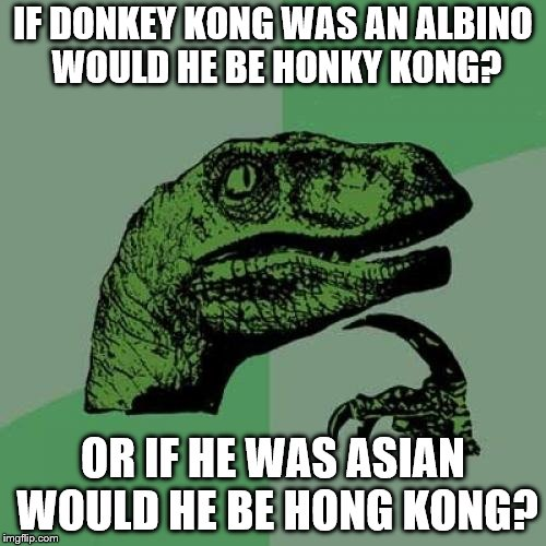 Philosoraptor Meme | IF DONKEY KONG WAS AN ALBINO WOULD HE BE HONKY KONG? OR IF HE WAS ASIAN WOULD HE BE HONG KONG? | image tagged in memes,philosoraptor | made w/ Imgflip meme maker