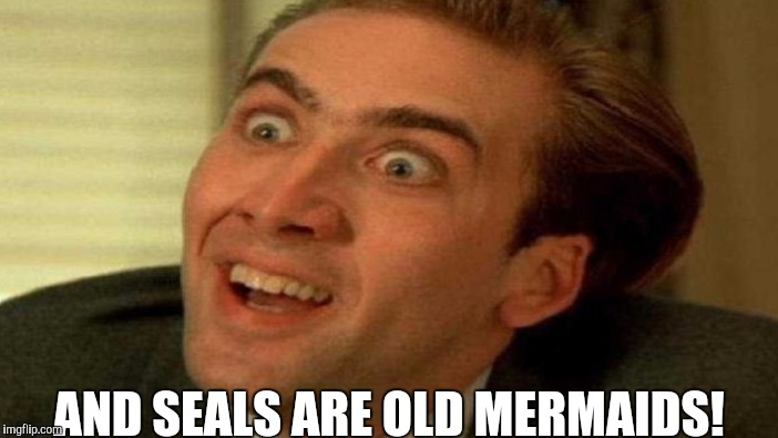 AND SEALS ARE OLD MERMAIDS! | made w/ Imgflip meme maker