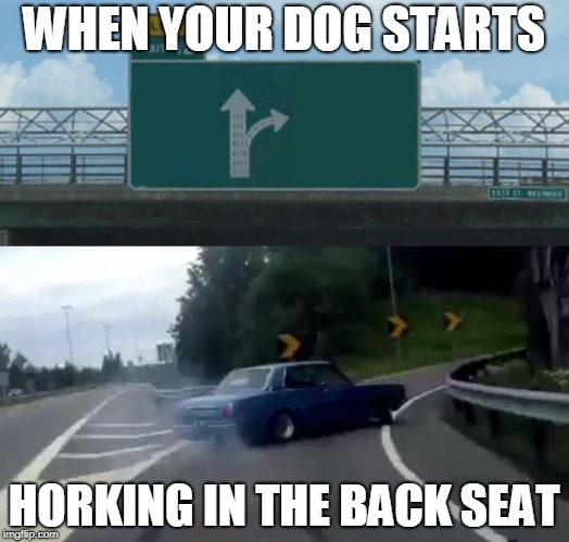 Left Exit 12 Off Ramp Meme | WHEN YOUR DOG STARTS HORKING IN THE BACK SEAT | image tagged in memes,left exit 12 off ramp | made w/ Imgflip meme maker