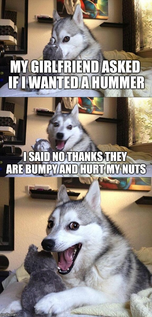 Bad Pun Dog Meme | MY GIRLFRIEND ASKED IF I WANTED A HUMMER I SAID NO THANKS THEY ARE BUMPY AND HURT MY NUTS | image tagged in memes,bad pun dog | made w/ Imgflip meme maker