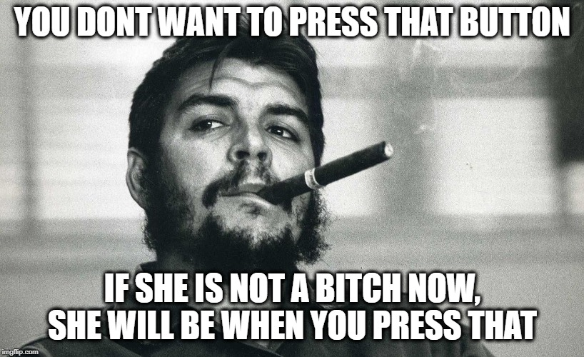 Che | YOU DONT WANT TO PRESS THAT BUTTON IF SHE IS NOT A B**CH NOW, SHE WILL BE WHEN YOU PRESS THAT | image tagged in che | made w/ Imgflip meme maker