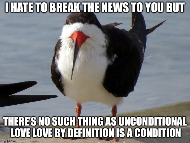 Even Less Popular Opinion Bird | I HATE TO BREAK THE NEWS TO YOU BUT THERE'S NO SUCH THING AS UNCONDITIONAL LOVE LOVE BY DEFINITION IS A CONDITION | image tagged in even less popular opinion bird | made w/ Imgflip meme maker