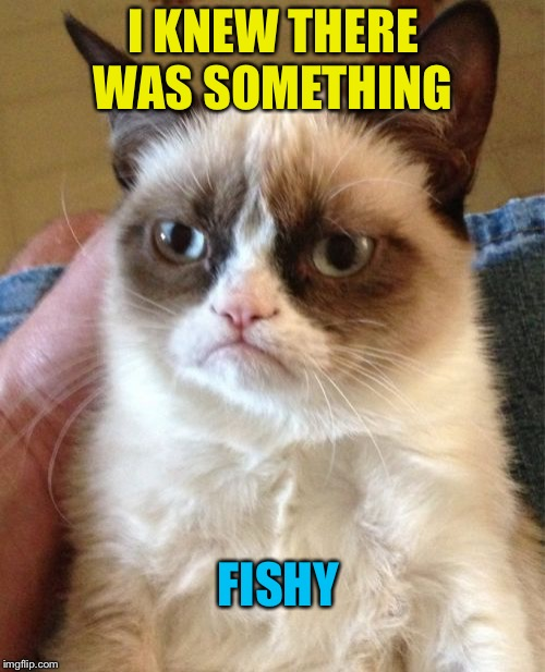 Grumpy Cat Meme | I KNEW THERE WAS SOMETHING FISHY | image tagged in memes,grumpy cat | made w/ Imgflip meme maker