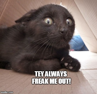 TEY ALWAYS FREAK ME OUT! | made w/ Imgflip meme maker