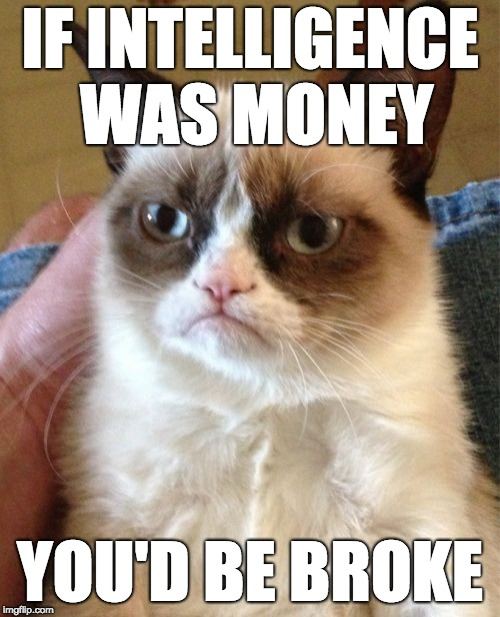Grumpy Cat | IF INTELLIGENCE WAS MONEY YOU'D BE BROKE | image tagged in memes,grumpy cat | made w/ Imgflip meme maker