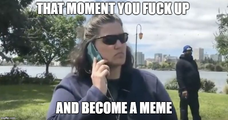 The birth of a Meme | THAT MOMENT YOU F**K UP AND BECOME A MEME | image tagged in lady on the phone,racist phone lady | made w/ Imgflip meme maker