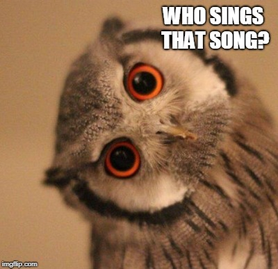 WHO SINGS THAT SONG? | made w/ Imgflip meme maker
