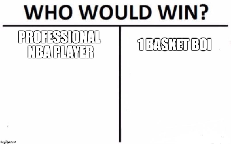 Who Would Win? | PROFESSIONAL NBA PLAYER 1 BASKET BOI | image tagged in memes,who would win | made w/ Imgflip meme maker