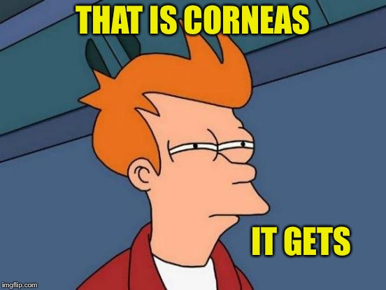 Futurama Fry Meme | THAT IS CORNEAS IT GETS | image tagged in memes,futurama fry | made w/ Imgflip meme maker