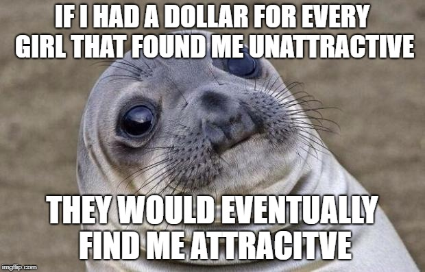 Awkward Moment Sealion Meme | IF I HAD A DOLLAR FOR EVERY GIRL THAT FOUND ME UNATTRACTIVE THEY WOULD EVENTUALLY FIND ME ATTRACITVE | image tagged in memes,awkward moment sealion | made w/ Imgflip meme maker