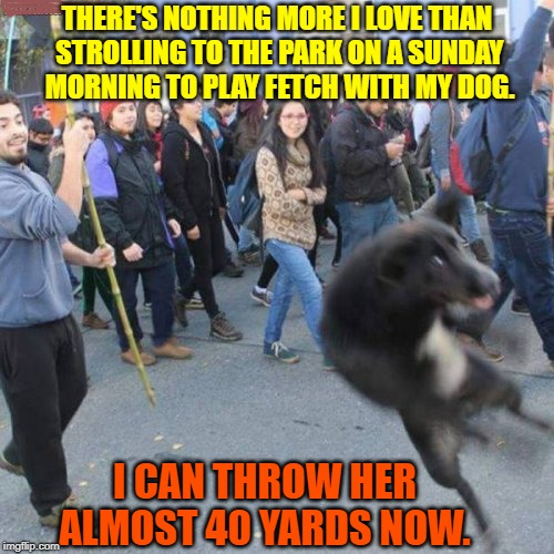 Animal Cruelty  | THERE'S NOTHING MORE I LOVE THAN STROLLING TO THE PARK ON A SUNDAY MORNING TO PLAY FETCH WITH MY DOG. I CAN THROW HER ALMOST 40 YARDS NOW. | image tagged in animals,dogs,dark humor,sports,funny memes | made w/ Imgflip meme maker