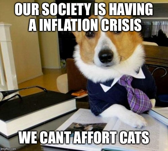 Lawyer Dog | OUR SOCIETY IS HAVING A INFLATION CRISIS WE CANT AFFORT CATS | image tagged in lawyer dog | made w/ Imgflip meme maker