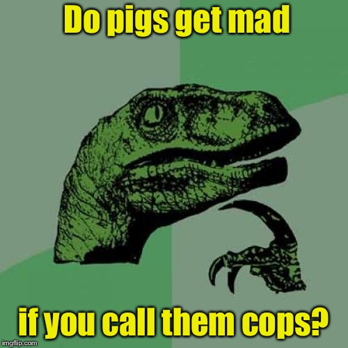 Philosoraptor Meme | Do pigs get mad if you call them cops? | image tagged in memes,philosoraptor | made w/ Imgflip meme maker