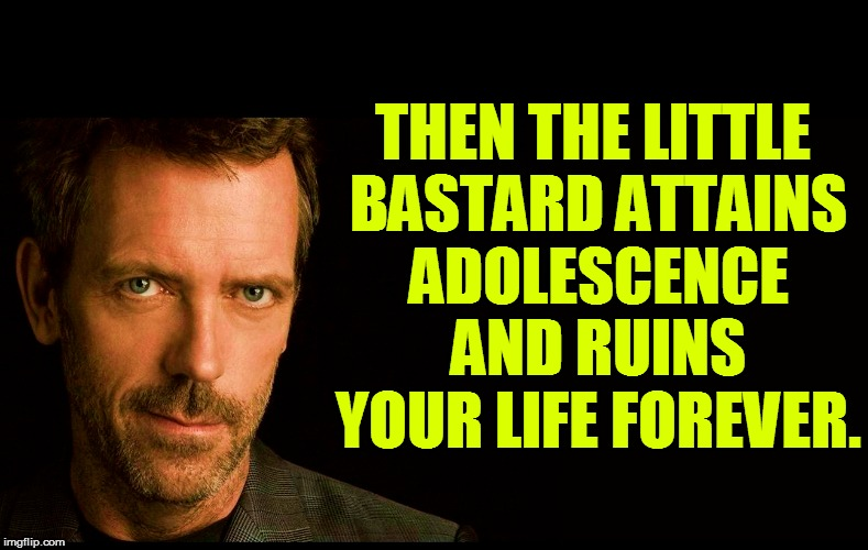 THEN THE LITTLE BASTARD ATTAINS ADOLESCENCE AND RUINS YOUR LIFE FOREVER. | made w/ Imgflip meme maker