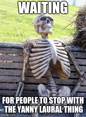 Waiting Skeleton Meme | WAITING FOR PEOPLE TO STOP WITH THE YANNY LAURAL THING | image tagged in memes,waiting skeleton | made w/ Imgflip meme maker
