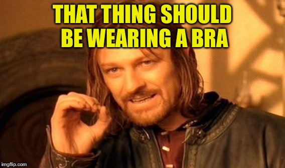 One Does Not Simply Meme | THAT THING SHOULD BE WEARING A BRA | image tagged in memes,one does not simply | made w/ Imgflip meme maker