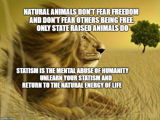 NATURAL ANIMALS DON'T FEAR FREEDOM AND DON'T FEAR OTHERS BEING FREE.     ONLY STATE RAISED ANIMALS DO STATISM IS THE MENTAL ABUSE OF HUMANIT | image tagged in truth | made w/ Imgflip meme maker