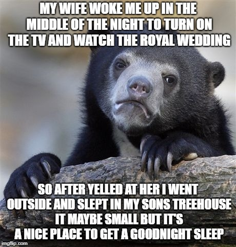 Confession Bear Meme | MY WIFE WOKE ME UP IN THE MIDDLE OF THE NIGHT TO TURN ON THE TV AND WATCH THE ROYAL WEDDING SO AFTER YELLED AT HER I WENT OUTSIDE AND SLEPT  | image tagged in memes,confession bear,who cares,i don't care | made w/ Imgflip meme maker